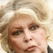 Brigitte Bardot : encore des soucis avec la justice !