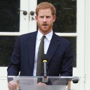 Baptême du prince Louis : La somme folle dépensée par le prince Harry...