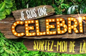 Je suis une célébrité, sortez-moi de là : Le jeu d'aventures revient sur TF1 !