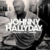 Album posthume de Johnny Hallyday : Lancement spectaculaire avec 800 000 copies