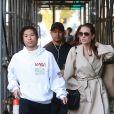 Exclusif - Angelina Jolie passe du bon temps avec son fils Pax à Santa Monica le 22 décembre 2018.