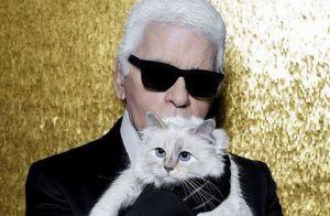Mort de Karl Lagerfeld : sa chatte Choupette lui rend un hommage stylé