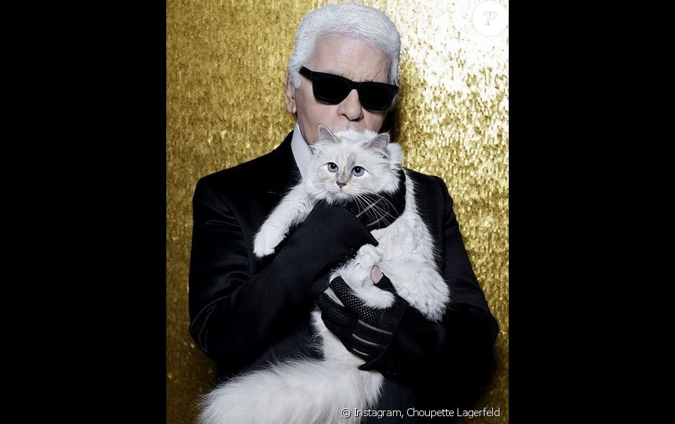Karl Lagerfeld et sa chatte, Choupette.