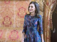 Letizia d'Espagne ressort sa robe à fleurs Carolina Herrera pour Ida Vitale