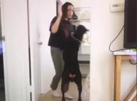 Brooke Houts : La youtubeuse frappe son chien, la police à ses trousses