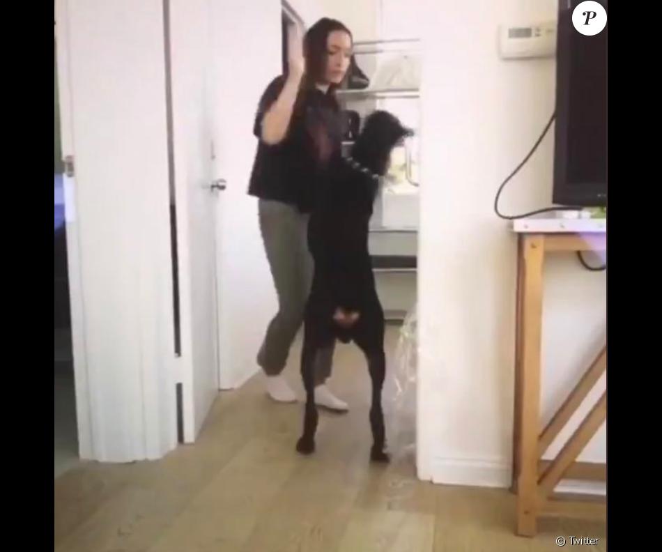 Brooke Houts apparaît dans une vidéo où elle maltraite son chien. Twiiter, le 7 août 2019.