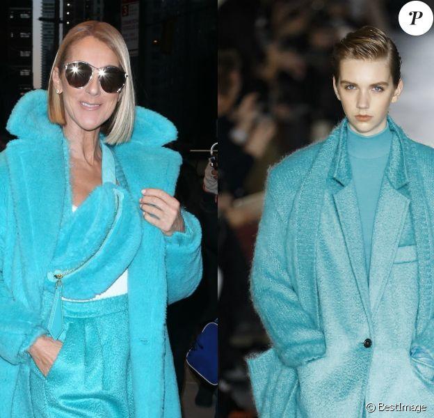 Céline Dion fait sensation à New York dans un total look Max Mara, collection automne-hiver 2019. Le 13 novembre 2019.
