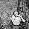 Grace Kelly lorsqu'elle était encore actrice à Hollywood, entre 1950 et 1955.