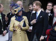 Harry et Meghan trop ambitieux ? Critique à peine déguisée de la princesse Anne