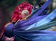 Mask Singer – Perroquets : Tous les indices décryptés