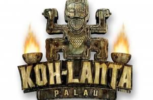 Koh Lanta 9 (première partie) : Tensions et dégustations de vers... les aventuriers souffrent ! C'est Pascal qui s'en va... (réactualisé)