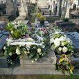 Obsèques de Thierry Séchan (frère du chanteur Renaud) au cimetière du Montparnasse à Paris le 16 janvier 2019.