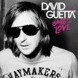 David Guetta figure dans les principaux classements des performances commerciales des musiciens en 2009