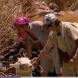 Anne-Marie et Chloé ont toutes les difficultés du monde... à dresser ce lama !