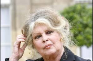 Brigitte Bardot raconte La Madrague et son jardin, où reposent les cendres d'une jeune fille...