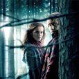 Nouvelle affiche de Harry Potter et les Reliques de la mort - partie I : Emma Watson et Rupert Grint