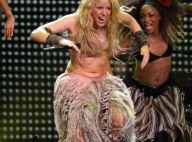 Shakira : Quand des fans lui sautent dessus en plein concert !