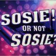 Vincent Cerutti présentera Sosie or not Sosie sur TF1