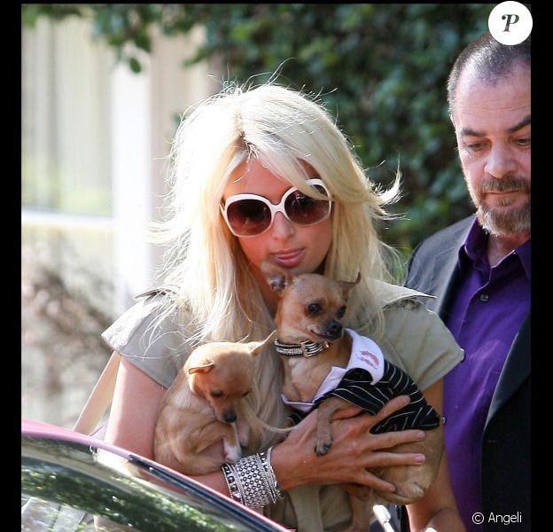 Paris Hilton et ses chiens, lors d'une visite à sa soeur Nicky à Los Angeles