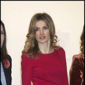 Letizia d'Espagne rouge de plaisir pour célébrer l'art avec son prince !