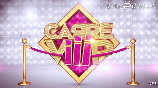 L'émission  Carré ViiiP  sur TF1 s'arrête, le 31 mars 2011.
