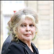 Brigitte Bardot : Sa nouvelle victime ? Catherine Deneuve !