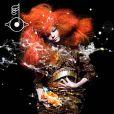 Björk shootée par Inez et Vinoodh, graphisme de M/M, pour l'album  Biophilia , en 2011..