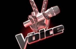 The Voice : Les deux premiers jurés du télé-crochet de TF1 révélés