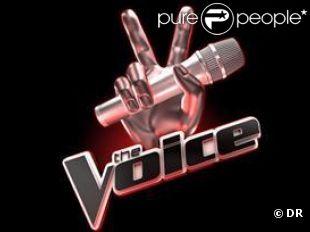 L'arrivée de The Voice sur TF1 suscite déjà beaucoup de spéculations...