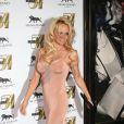 Pamela Anderson était au sommet de son art à Las Vegas, le 31 décembre 2011.
