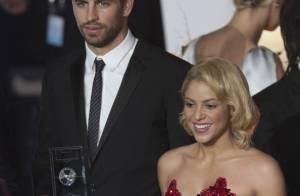 Shakira : Chevalier de l'Ordre des arts et des lettres avant de reprendre Cabrel