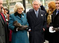 Charles et Camilla accueillis à bras ouverts à Tottenham, après les émeutes