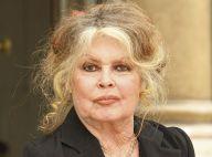 Brigitte Bardot veut être mise en prison pour défendre un de ses amis