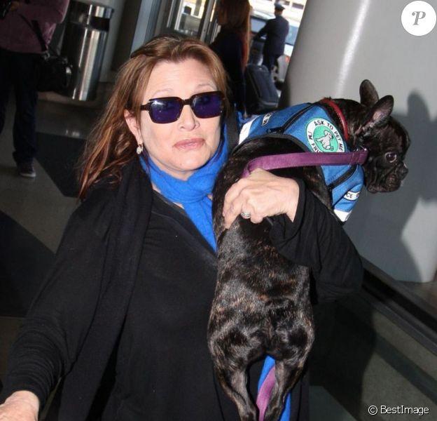Carrie Fisher accompagnée de son chien à l'aéroport de Los Angeles, le 3 novembre 2012.