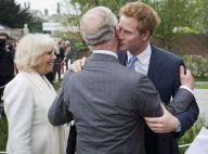 Prince Harry : La famille royale réunie autour de lui en son jardin Sentebale