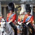 Le prince William, colonel des Irish Guards, et le prince Charles, colonel des Welsh Guards, le 15 juin 2013, lors de la parade Trooping the Colour, à la gloire des forces armées et de l'anniversaire de la souveraine, Elizabeth II.