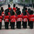 Image, à Londres le 15 juin 2013, de la cérémonie Trooping the Colour, à la gloire des forces armées et de l'anniversaire de la souveraine.