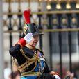 La princesse Anne, colonel des Blues and Royals, au moment de l'arrivée de la reine Elizabeth II à Horse Guards Parade, à Londres le 15 juin 2013, lors de la cérémonie Trooping the Colour, à la gloire des forces armées et de l'anniversaire de la souveraine.