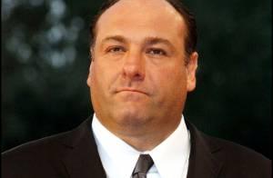 Mort de James Gandolfini des Soprano : Pluie d'hommages après sa crise cardiaque