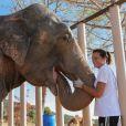Exclusif - La princesse Stéphanie de Monaco passe quotidiennement du temps à Roc Agel avec les éléphantes Baby et Népal, et laissait observer leur complicité magique le 19 septembre 2013. Sauvées de la mort, elles ont désormais droit à une vie de princesses au domaine de Fonbonne, et tous les tests pratiqués confirment qu'elles sont en parfaite santé.