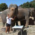 Les éléphantes Baby et Népal mènent une vie de princesses au domaine de Fonbonne, choyées par la princesse Stéphanie de Monaco, comme ici le 20 août 2013