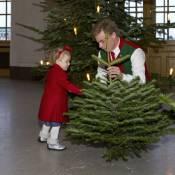 Princesse Estelle : Adorable pour Noël, elle réceptionne les sapins royaux