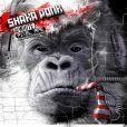 Shaka Ponk - The White Pixel Ape - l'album est dans les bacs depuis le 17 mars 2014.