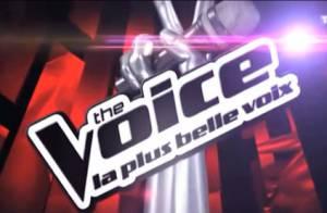 The Voice 3 : Les Talents jouent gros... L'épreuve ultime va faire des victimes