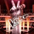 The Voice Kids, bientôt sur TF1 !
