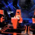 """La première Voix de """"The Voice Kids"""" (TF1), révélée. Août 2014."""