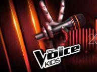 The Voice Kids - la finale : Les neuf jeunes Talents vont tout donner