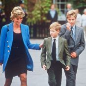 Lady Di : Les princes William et Harry unis dans un hommage plein de passion