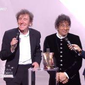 Victoires de la Musique 2015 : Souchon et Voulzy, la Victoire n'a pas d'âge !