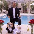 John Legend et Chrissy Teigen marient leurs chiens pour la bonne cause, le 1er avril 2015